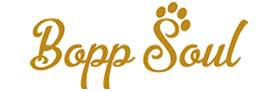 Bopp Soul